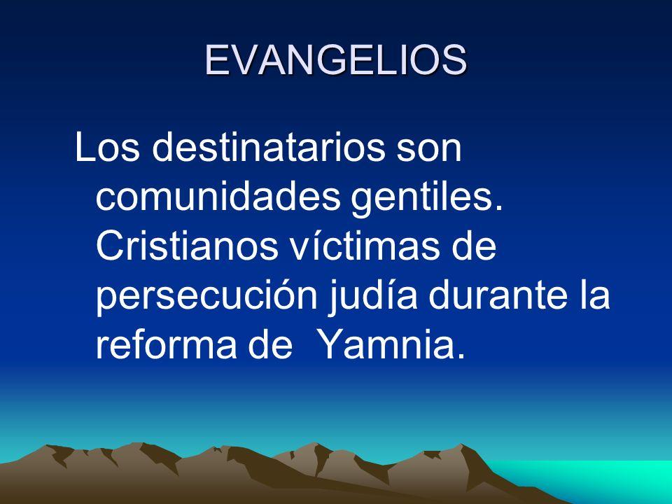 EVANGELIOS Los destinatarios son comunidades gentiles. Cristianos víctimas de persecución judía durante la reforma de Yamnia.