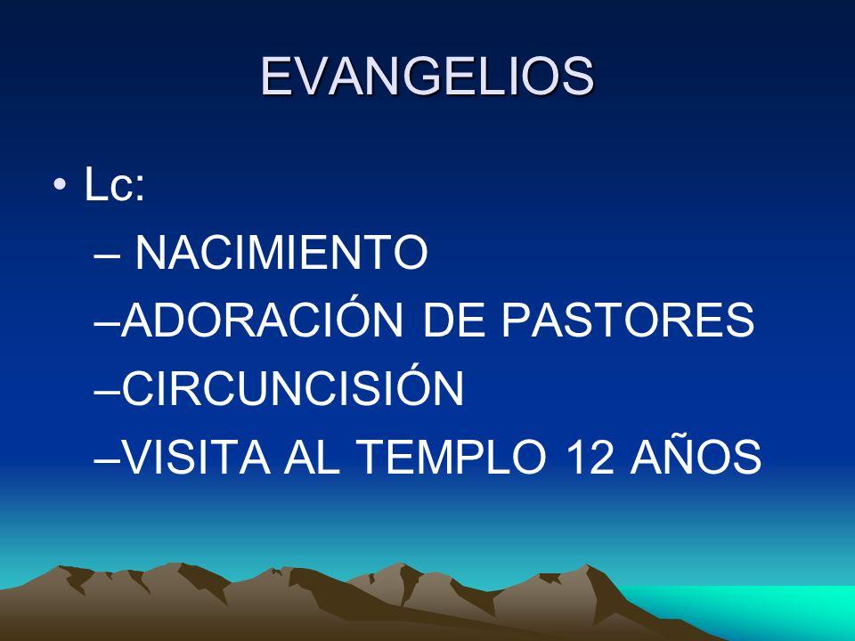 EVANGELIOS Lc: – NACIMIENTO –ADORACIÓN DE PASTORES –CIRCUNCISIÓN –VISITA AL TEMPLO 12 AÑOS