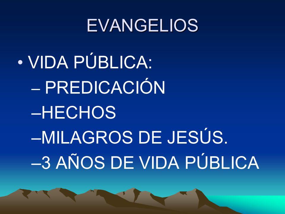 EVANGELIOS VIDA PÚBLICA: – PREDICACIÓN –HECHOS –MILAGROS DE JESÚS. –3 AÑOS DE VIDA PÚBLICA