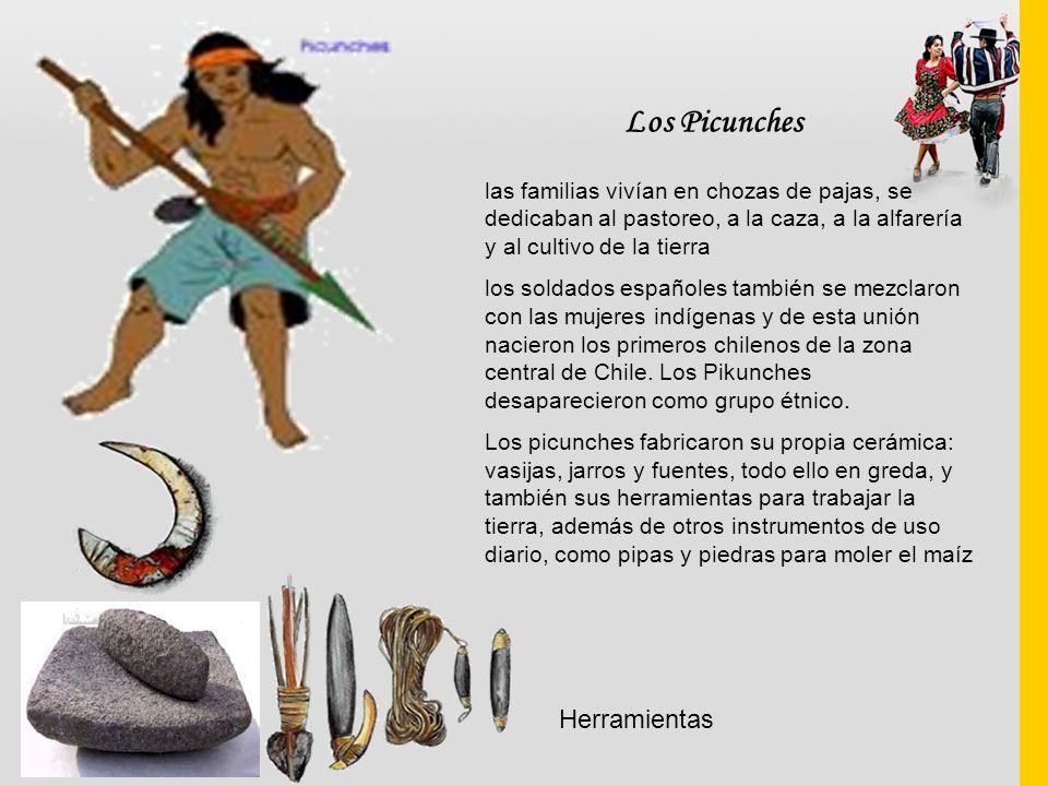 Los Picunches las familias vivían en chozas de pajas, se dedicaban al pastoreo, a la caza, a la alfarería y al cultivo de la tierra los soldados españ