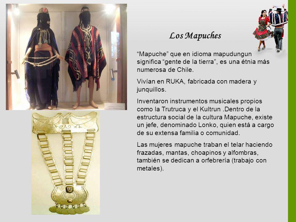 Los Mapuches Mapuche que en idioma mapudungun significa gente de la tierra, es una étnia más numerosa de Chile. Vivían en RUKA, fabricada con madera y