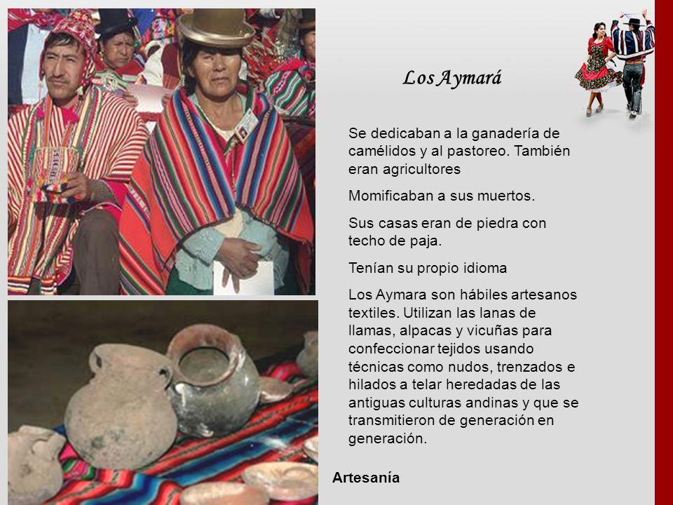 Los Aymará Se dedicaban a la ganadería de camélidos y al pastoreo. También eran agricultores Momificaban a sus muertos. Sus casas eran de piedra con t