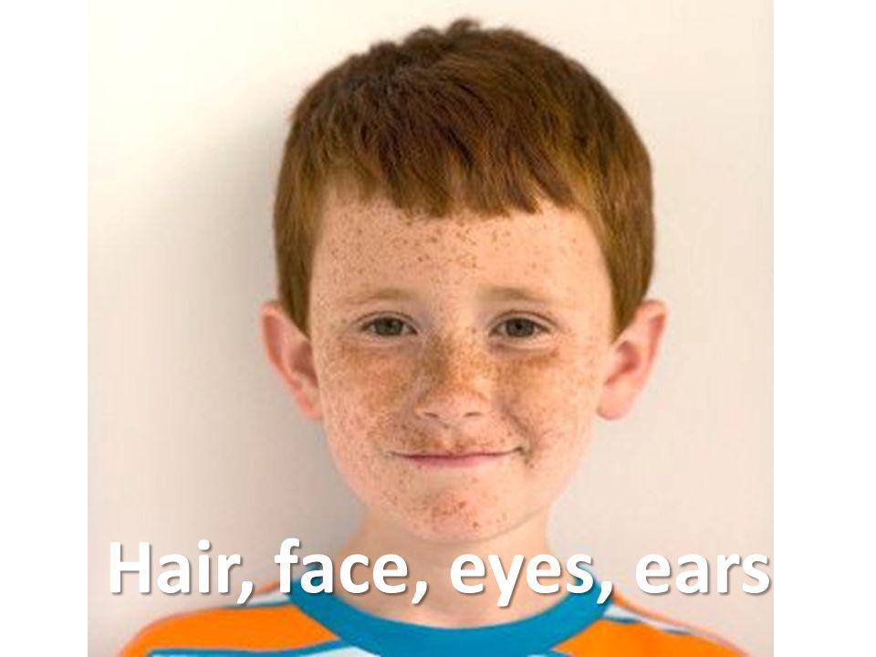 Hair, face, eyes, ears