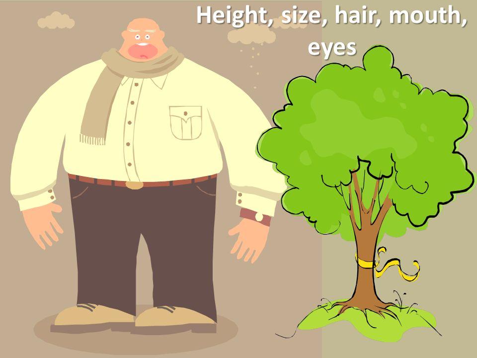 Sample Sentences for the Giant Él es muy alto.Él es más alto que el árbol.