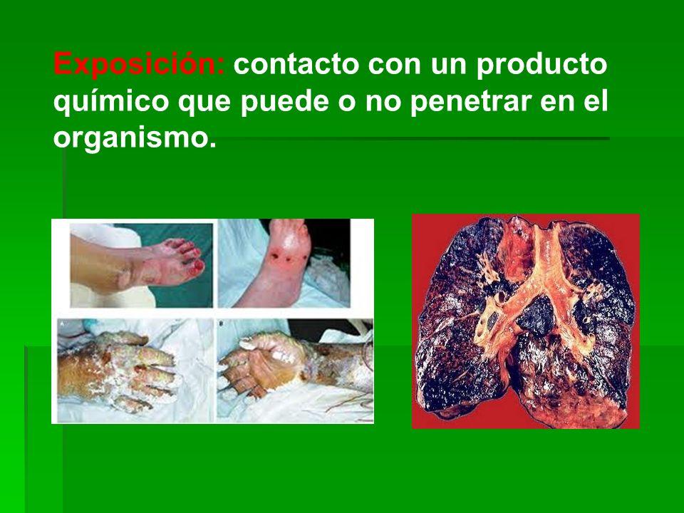 Exposición: contacto con un producto químico que puede o no penetrar en el organismo.