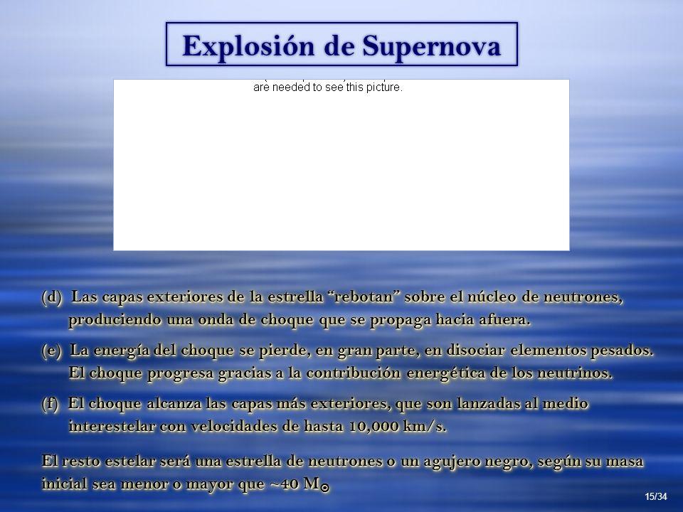 Explosión de Supernova (d) Las capas exteriores de la estrella rebotan sobre el núcleo de neutrones, produciendo una onda de choque que se propaga hacia afuera.