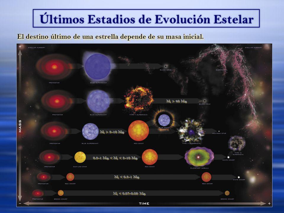 Últimos Estadios de Evolución Estelar El destino último de una estrella depende de su masa inicial. M i < 0.8-1 M M i < 0.8-1 M 0.8-1 M < M i < 8-10 M