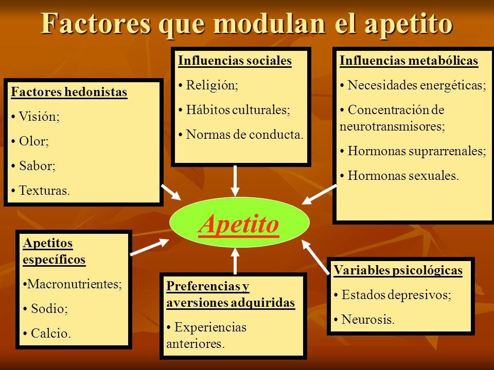 Factores que modulan el apetito Apetito Factores hedonistas Visión; Olor; Sabor; Texturas. Preferencias y aversiones adquiridas Experiencias anteriore