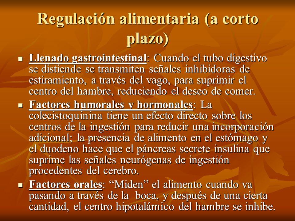 Regulación alimentaria (a corto plazo) Llenado gastrointestinal: Cuando el tubo digestivo se distiende se transmiten señales inhibidoras de estiramien