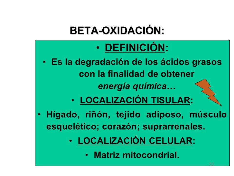 BETA-OXIDACIÓN: DEFINICIÓN: Es la degradación de los ácidos grasos con la finalidad de obtener energía química… LOCALIZACIÓN TISULAR: Hígado, riñón, tejido adiposo, músculo esquelético; corazón; suprarrenales.