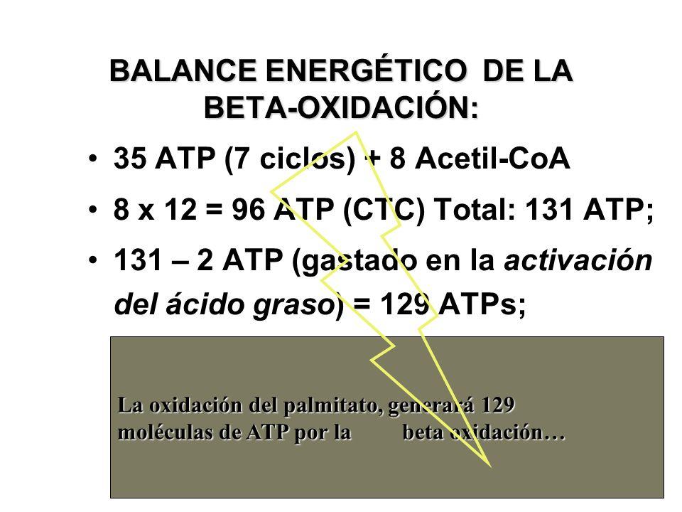 BALANCE ENERGÉTICO DE LA BETA-OXIDACIÓN: 35 ATP (7 ciclos) + 8 Acetil-CoA 8 x 12 = 96 ATP (CTC) Total: 131 ATP; 131 – 2 ATP (gastado en la activación del ácido graso) = 129 ATPs; La oxidación del palmitato, generará 129 moléculas de ATP por la beta oxidación 38 La oxidación del palmitato, generará 129 moléculas de ATP por la beta oxidación…