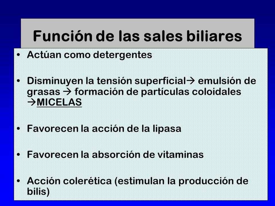 Función de las sales biliares Actúan como detergentes Disminuyen la tensión superficial emulsión de grasas formación de partículas coloidales MICELAS Favorecen la acción de la lipasa Favorecen la absorción de vitaminas Acción colerética (estimulan la producción de bilis)