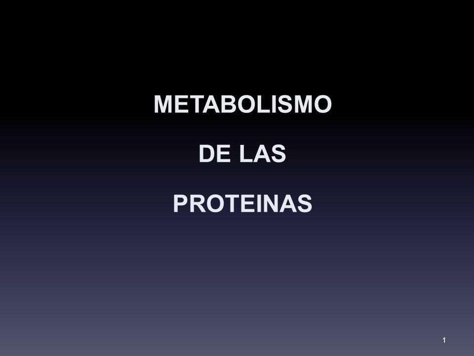 METABOLISMO DE LAS PROTEINAS 1