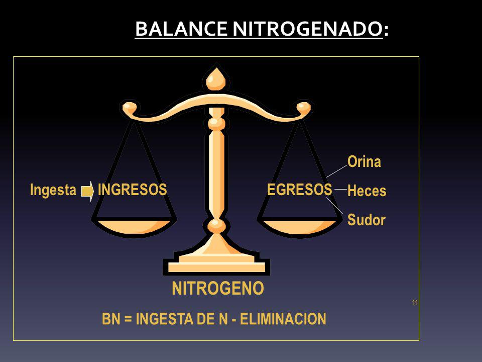 BALANCE NITROGENADO: BALANCE NITROGENADO: 11 INGRESOSEGRESOS NITROGENO Ingesta Orina Heces Sudor BN = INGESTA DE N - ELIMINACION