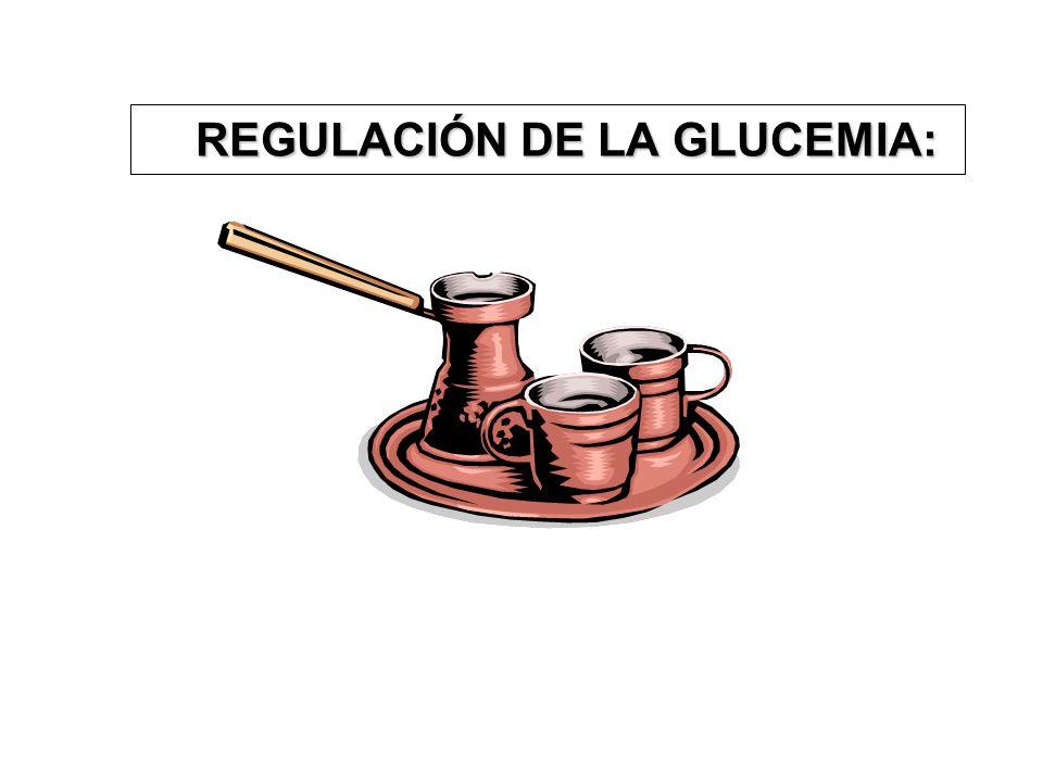 REGULACIÓN DE LA GLUCEMIA: