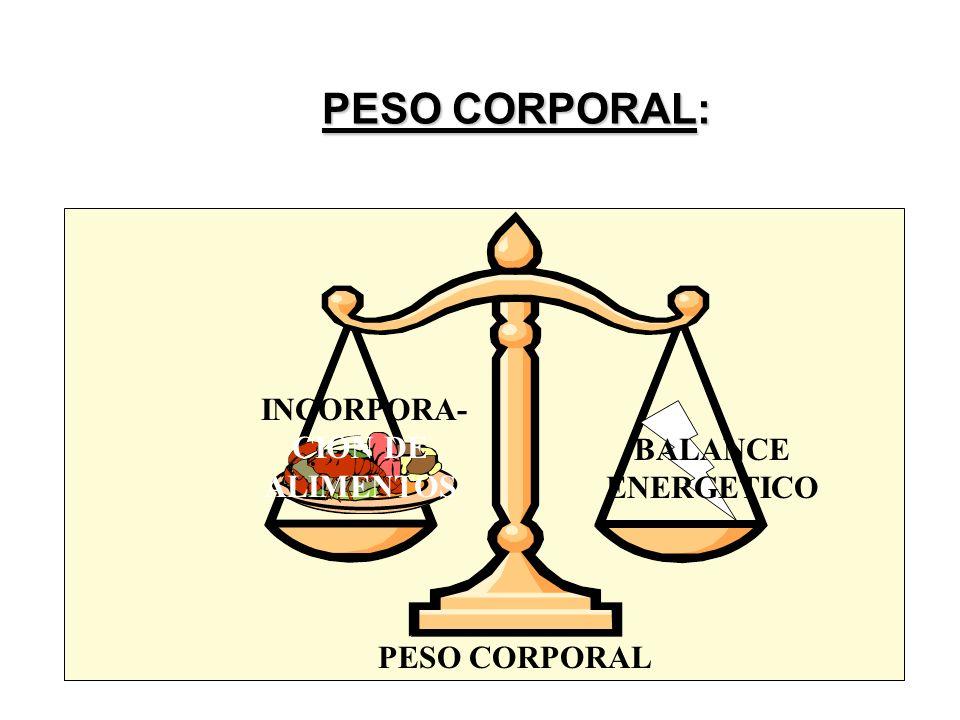 PESO CORPORAL: PESO CORPORAL: INCORPORA- CION DE ALIMENTOS BALANCE ENERGETICO PESO CORPORAL