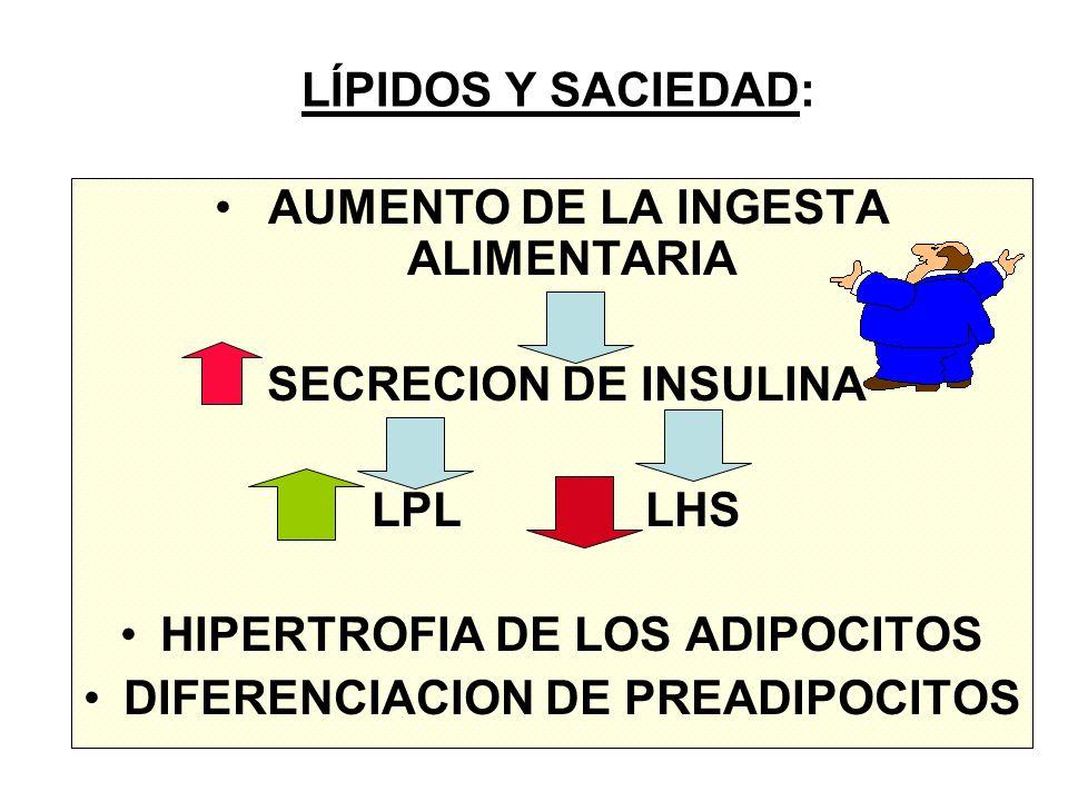 LÍPIDOS Y SACIEDAD: AUMENTO DE LA INGESTA ALIMENTARIA SECRECION DE INSULINA LPL LHS HIPERTROFIA DE LOS ADIPOCITOS DIFERENCIACION DE PREADIPOCITOS