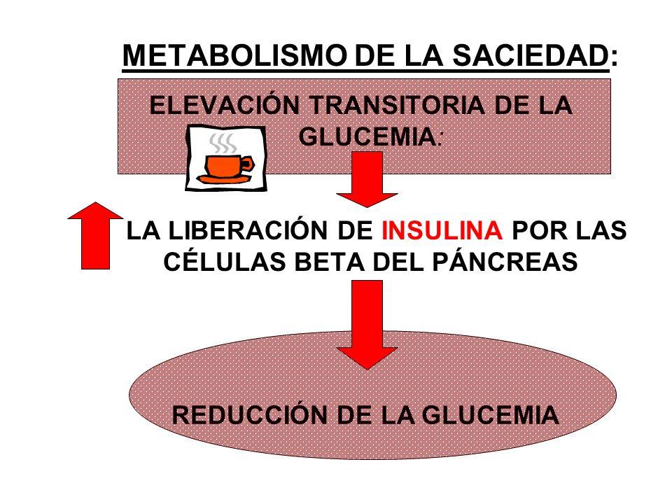 METABOLISMO DE LA SACIEDAD: ELEVACIÓN TRANSITORIA DE LA GLUCEMIA:.