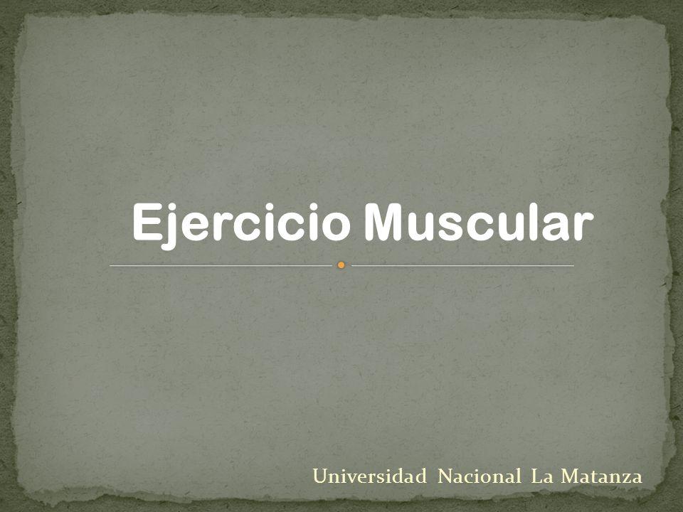 Universidad Nacional La Matanza Ejercicio Muscular