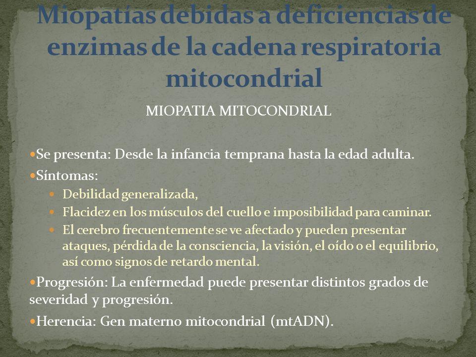 MIOPATIA MITOCONDRIAL Se presenta: Desde la infancia temprana hasta la edad adulta. Síntomas: Debilidad generalizada, Flacidez en los músculos del cue