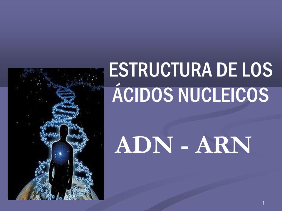 UN POCO DE HISTORIA … 1869-1943 se descubre un nuevo compuesto fosfórico orgánico: la nucleina, se demostró que este compuesto constaba de ác.