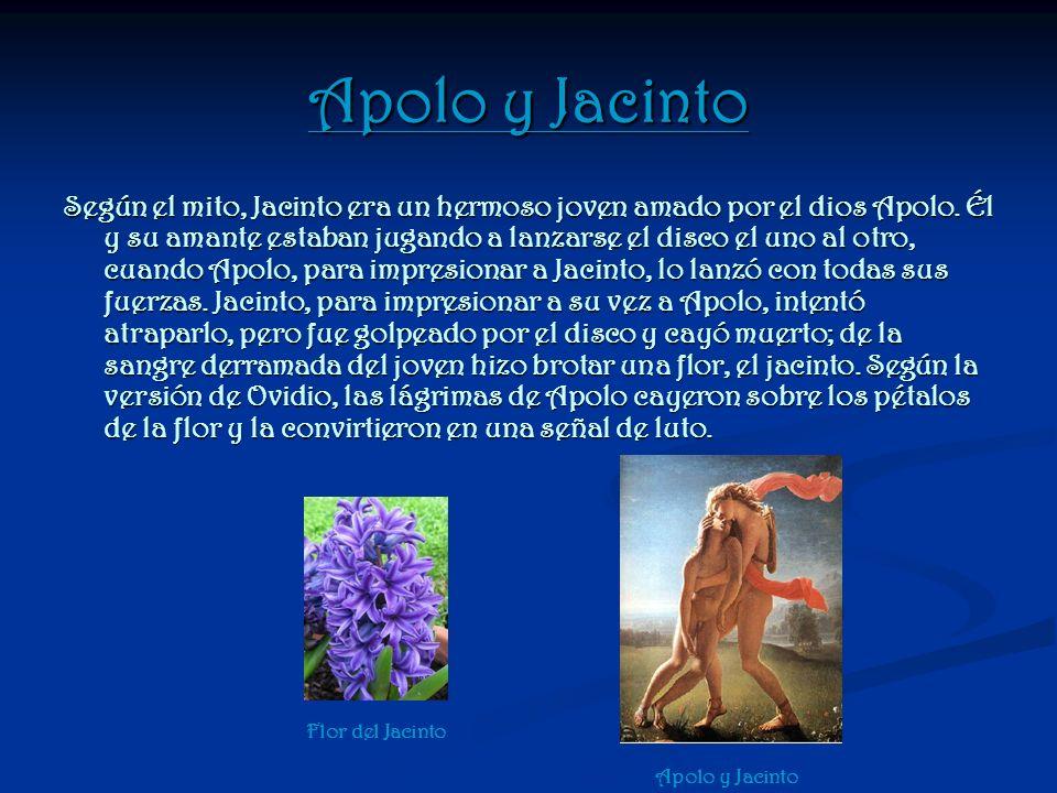 Apolo y Jacinto Según el mito, Jacinto era un hermoso joven amado por el dios Apolo. Él y su amante estaban jugando a lanzarse el disco el uno al otro