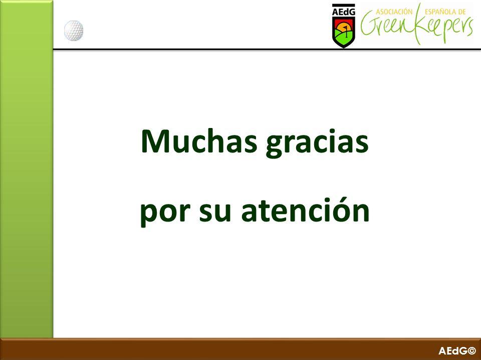 AEdG© Muchas gracias por su atención