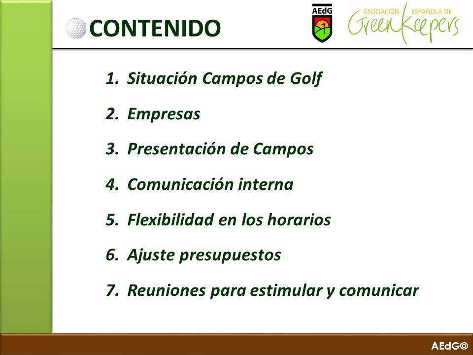 AEdG© CONTENIDO 1. Situación Campos de Golf 2. Empresas 3. Presentación de Campos 4. Comunicación interna 5. Flexibilidad en los horarios 6. Ajuste pr