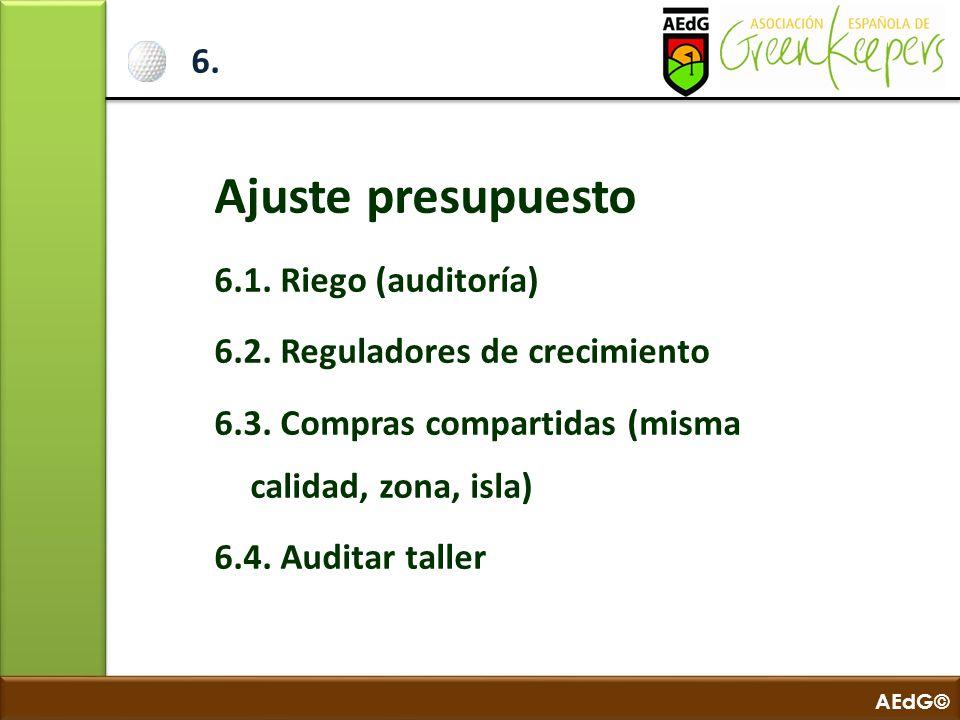 AEdG© 6. Ajuste presupuesto 6.1. Riego (auditoría) 6.2. Reguladores de crecimiento 6.3. Compras compartidas (misma calidad, zona, isla) 6.4. Auditar t