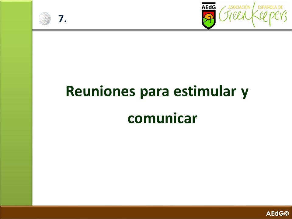 AEdG© 7. Reuniones para estimular y comunicar