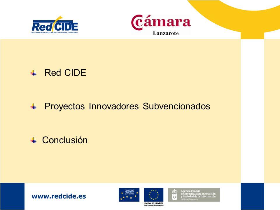 Red CIDE Proyectos Innovadores Subvencionados Conclusión