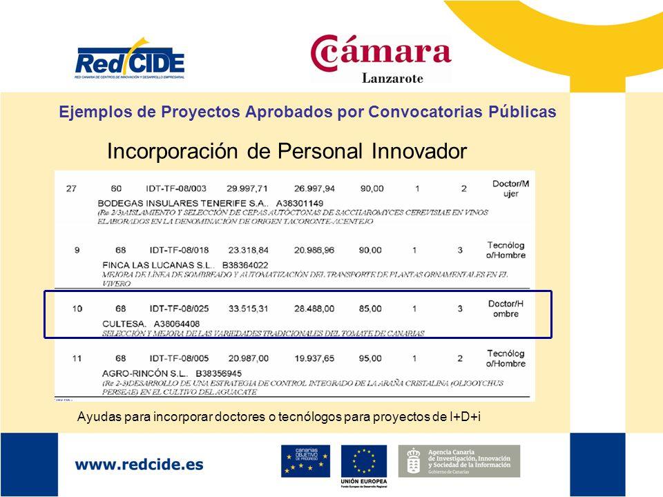 Ejemplos de Proyectos Aprobados por Convocatorias Públicas Incorporación de Personal Innovador Ayudas para incorporar doctores o tecnólogos para proye