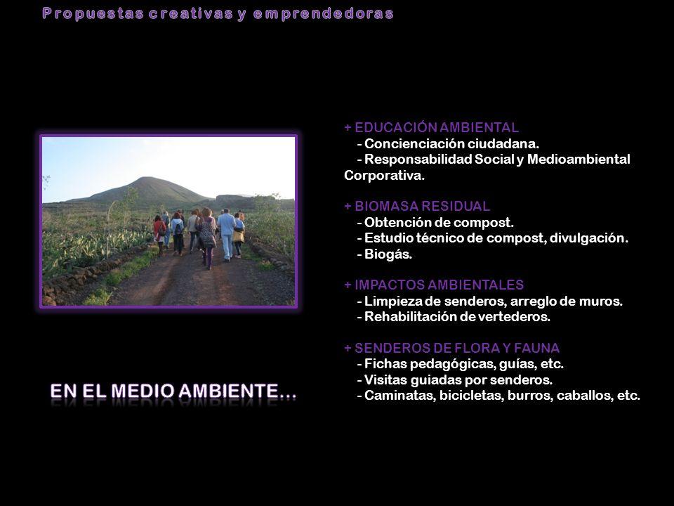+ EDUCACIÓN AMBIENTAL - Concienciación ciudadana. - Responsabilidad Social y Medioambiental Corporativa. + BIOMASA RESIDUAL - Obtención de compost. -