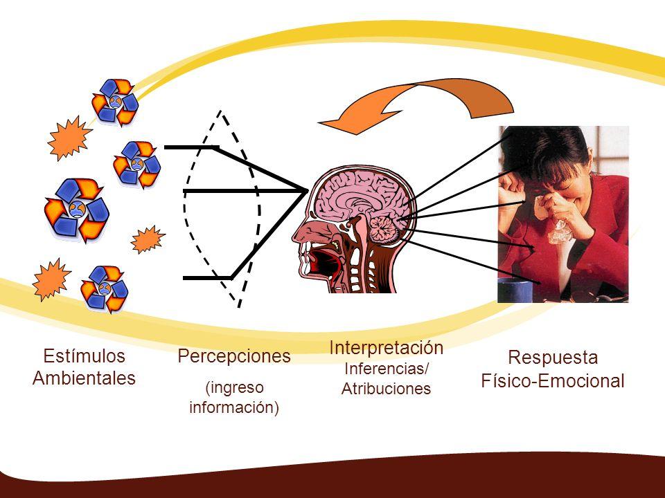 Estímulos Ambientales Percepciones (ingreso información) Interpretación Inferencias/ Atribuciones Respuesta Físico-Emocional