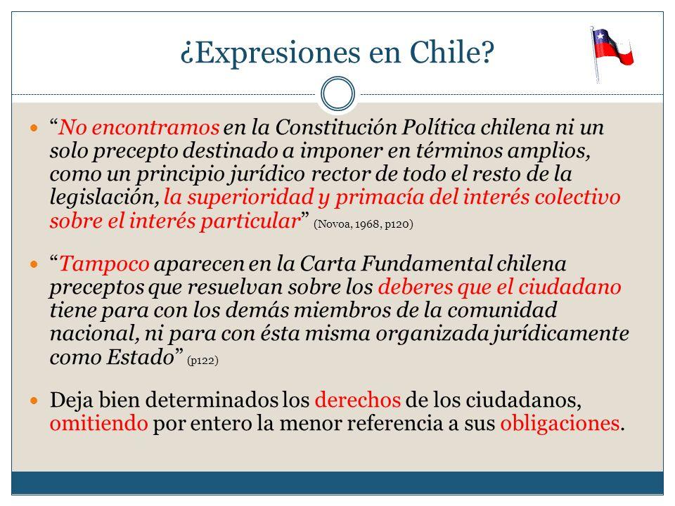 ¿Expresiones en Chile? No encontramos en la Constitución Política chilena ni un solo precepto destinado a imponer en términos amplios, como un princip