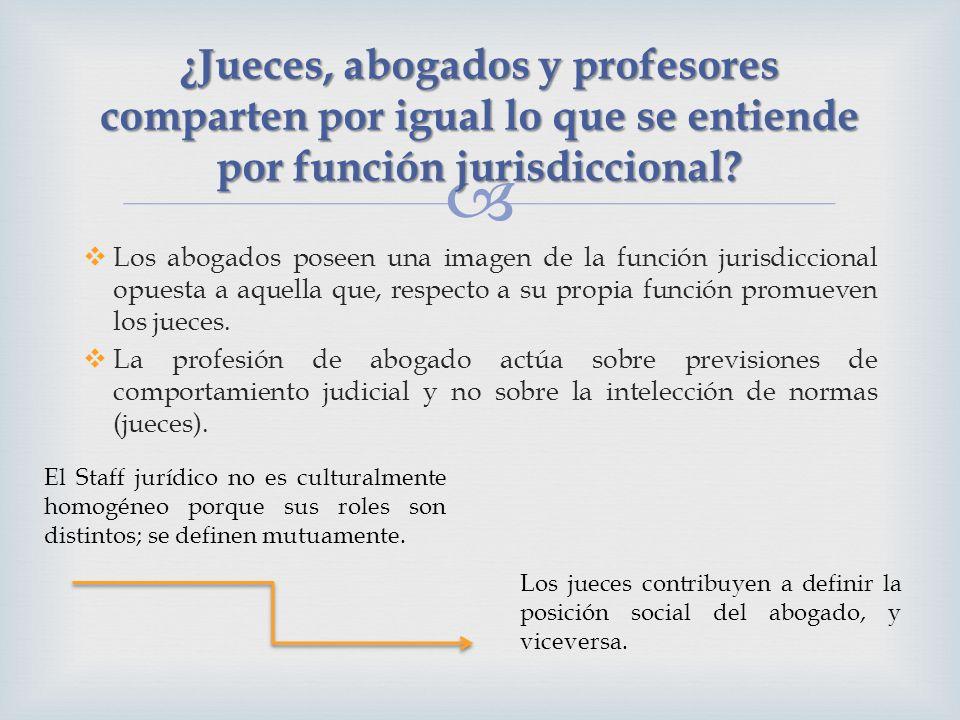 ¿Jueces, abogados y profesores comparten por igual lo que se entiende por función jurisdiccional? Los abogados poseen una imagen de la función jurisdi