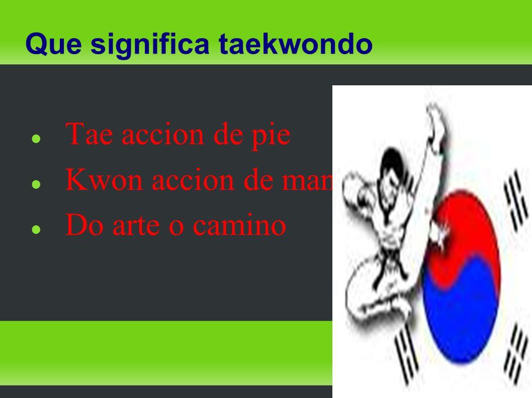 Que significa taekwondo Tae accion de pie Kwon accion de mano Do arte o camino