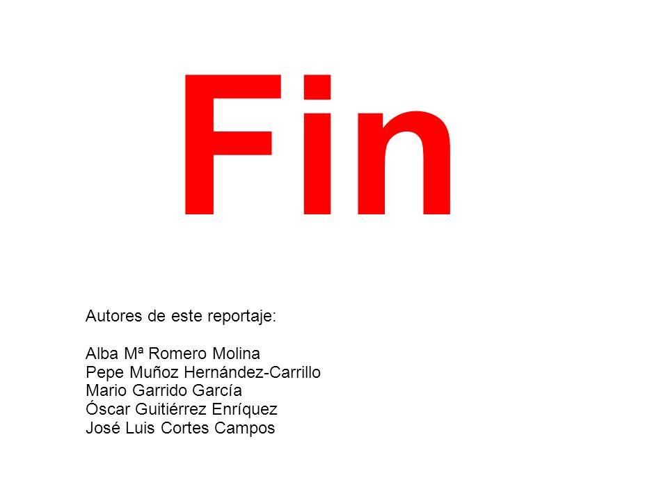 Fin Autores de este reportaje: Alba Mª Romero Molina Pepe Muñoz Hernández-Carrillo Mario Garrido García Óscar Guitiérrez Enríquez José Luis Cortes Cam