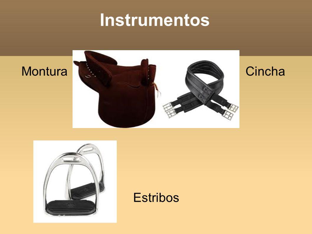 Instrumentos Montura Cincha Estribos