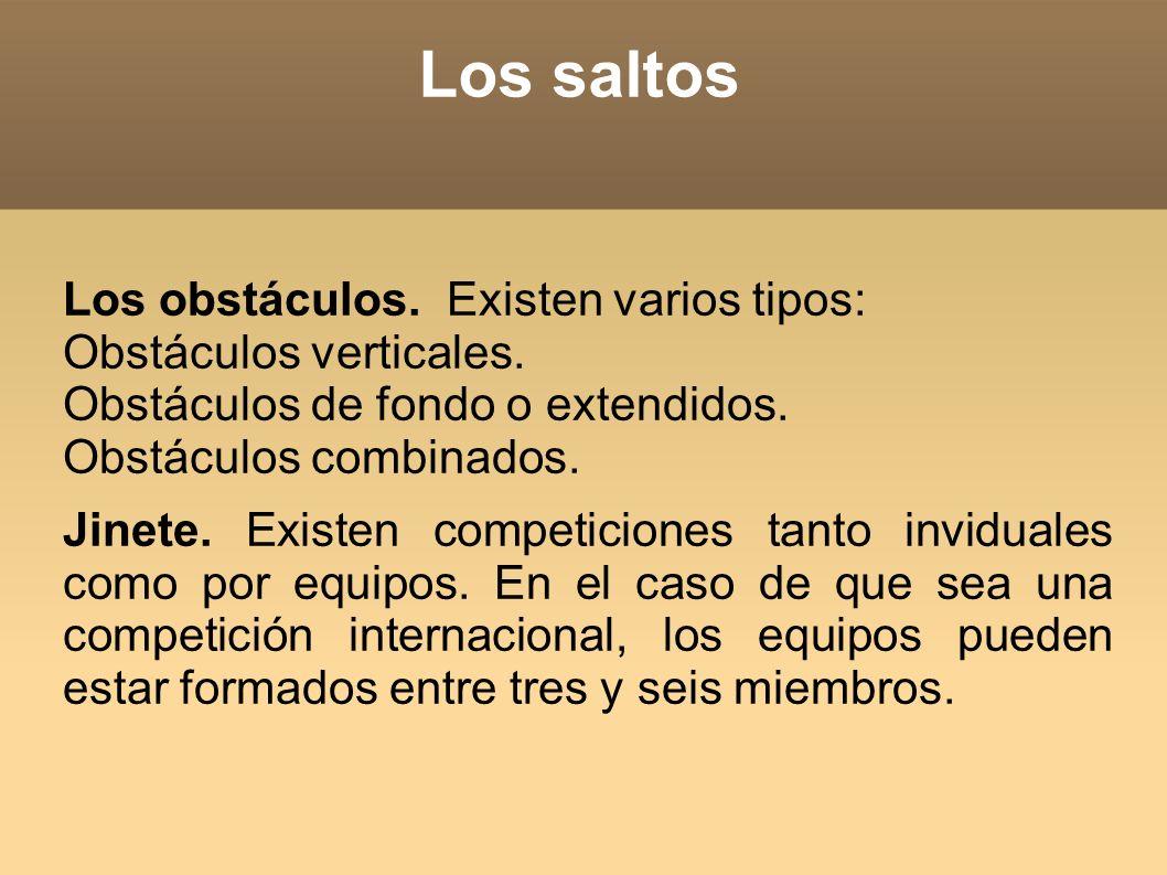 Los saltos Los obstáculos. Existen varios tipos: Obstáculos verticales. Obstáculos de fondo o extendidos. Obstáculos combinados. Jinete. Existen compe
