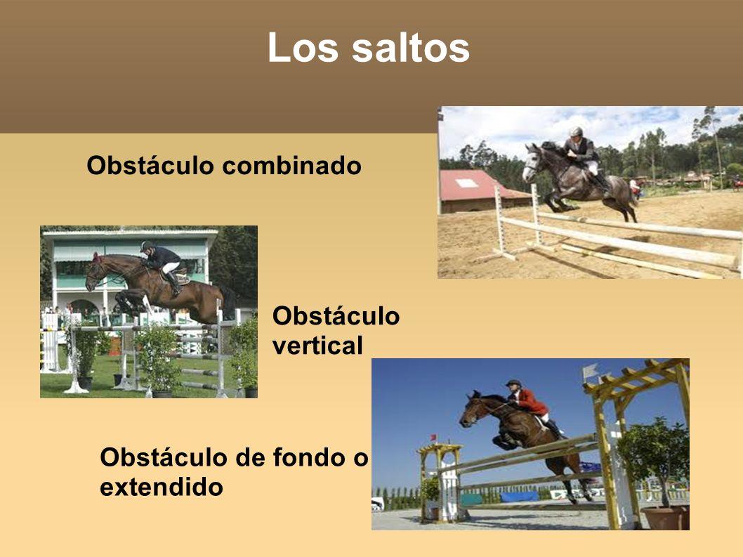 Los saltos Obstáculo combinado Obstáculo vertical Obstáculo de fondo o extendido