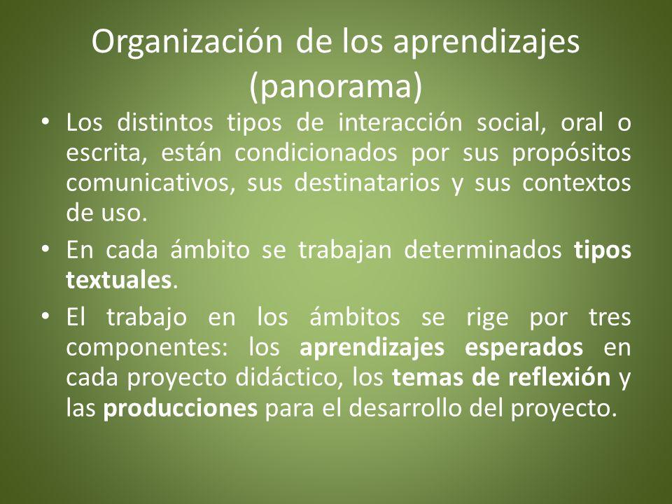 Organización de los aprendizajes Los aprendizajes esperados constituyen un referente fundamental, tanto para la planificación como para la evaluación.