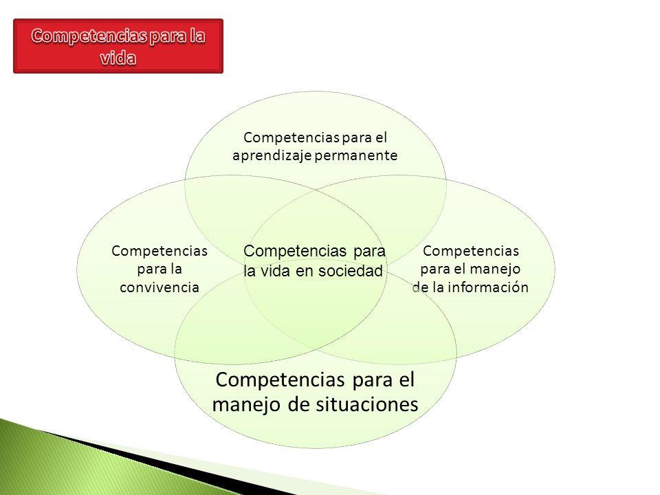 Competencias para el aprendizaje permanente Competencias para el manejo de la información Competencias para el manejo de situaciones Competencias para