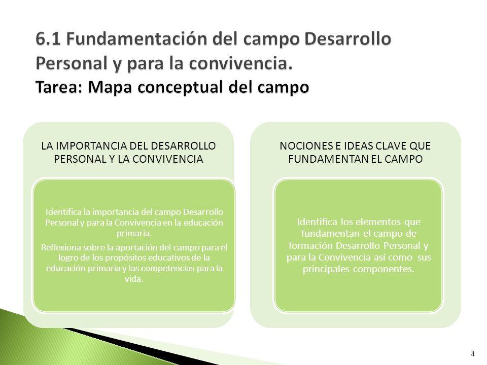 DESARROLLO PERSONAL Y SOCIAL: ASPECTOS CENTRALES DE LAS COMPETENCIAS PARA LA VIDA Describe cómo contribuye el campo de formación Desarrollo Personal y para la Convivencia al desarrollo de las competencias para la vida.
