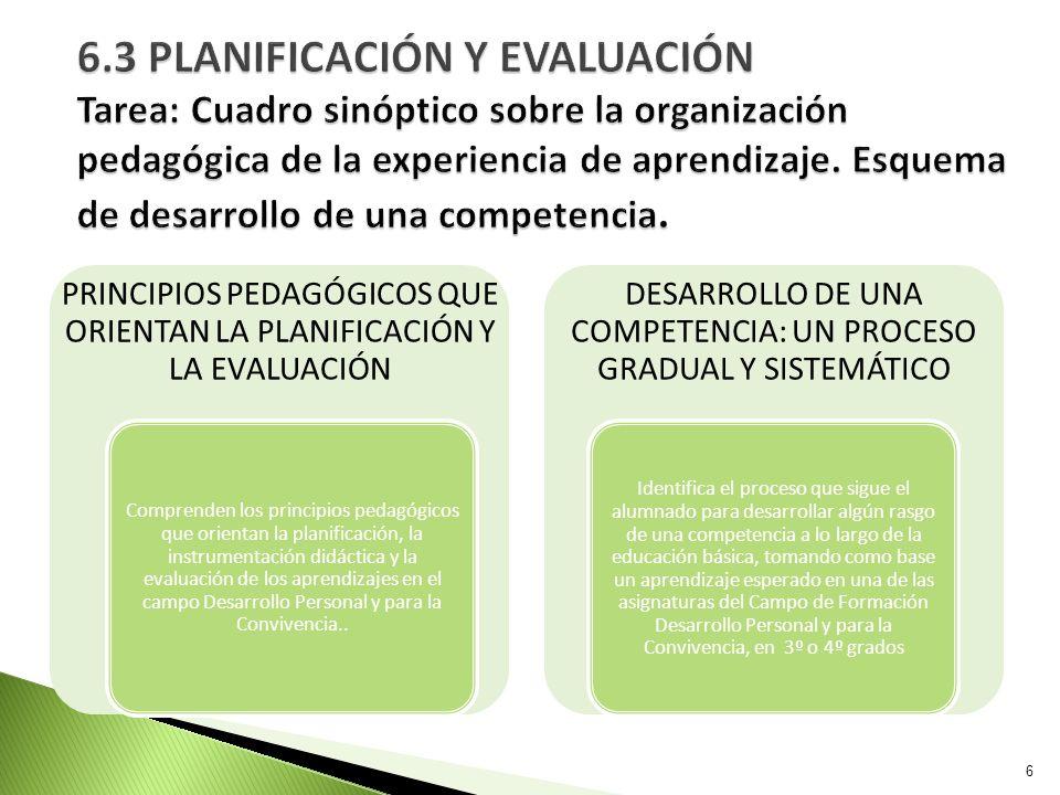 PRINCIPIOS PEDAGÓGICOS QUE ORIENTAN LA PLANIFICACIÓN Y LA EVALUACIÓN Comprenden los principios pedagógicos que orientan la planificación, la instrumen