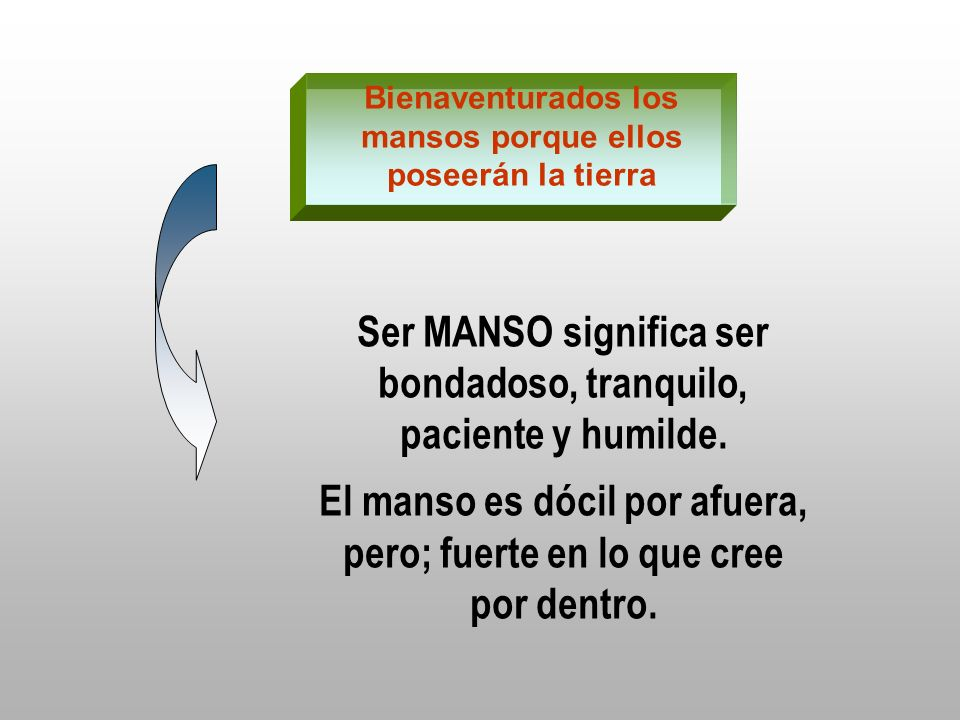 Bienaventurados los mansos porque ellos poseerán la tierra Ser MANSO significa ser bondadoso, tranquilo, paciente y humilde. El manso es dócil por afu