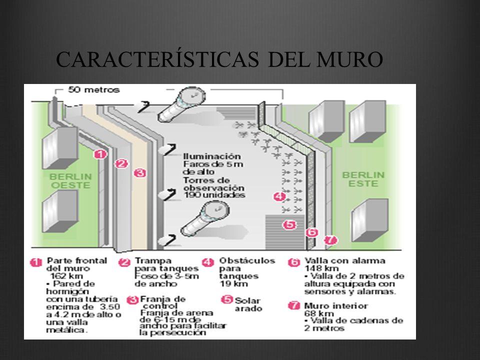 CARACTERÍSTICAS DEL MURO