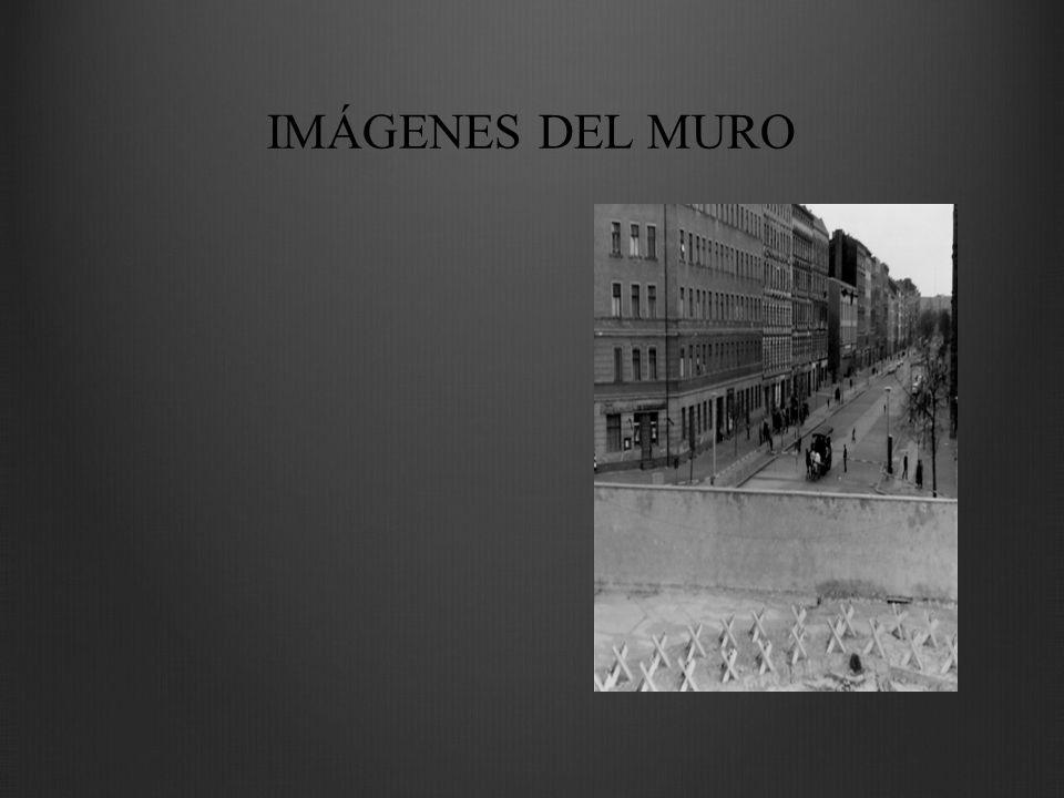 IMÁGENES DEL MURO