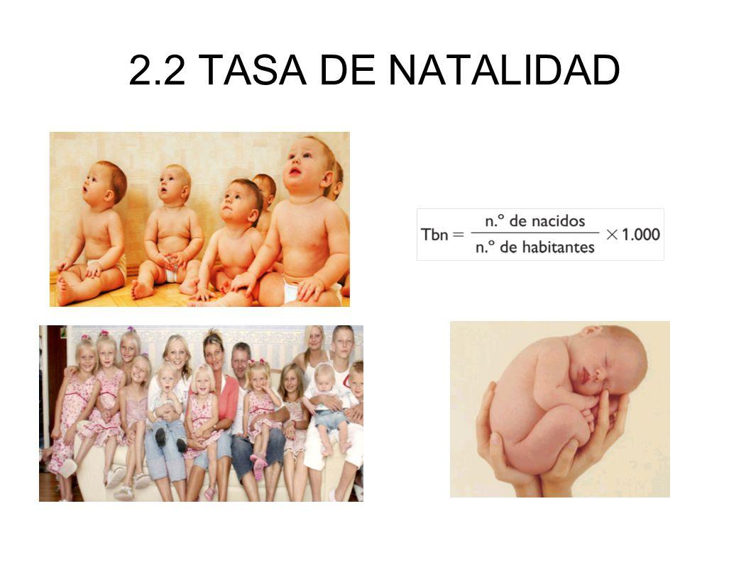 2.3 TASA DE FECUNDIDAD En el año 2005 el número medio de hijos por mujer entre los 15 y los 49 años era de 1,35.