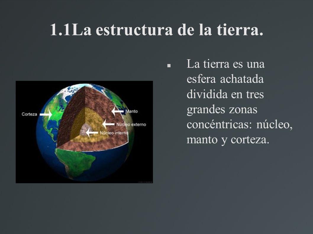 3.4 La acción de la vegetación La vegetación también contribuye a la formación del relieve terrestre.